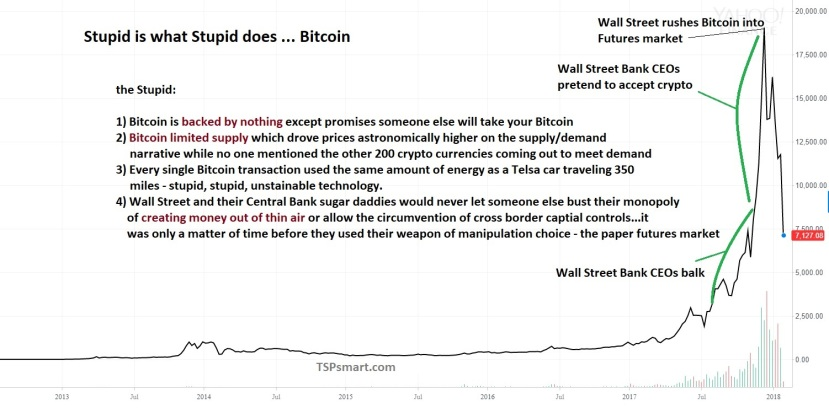 the short history of Bitcoin